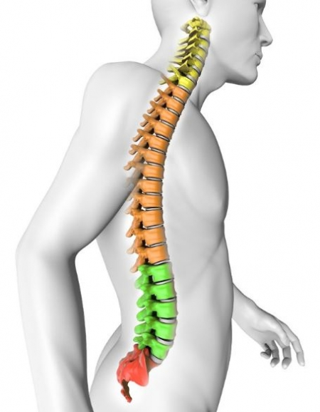 Spine disorder treatment